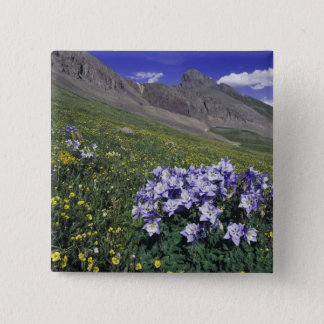 Mountains and wildflowers in alpine meadow, Blue Pinback Button