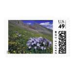 Mountains and wildflowers in alpine meadow, Blue Postage Stamps