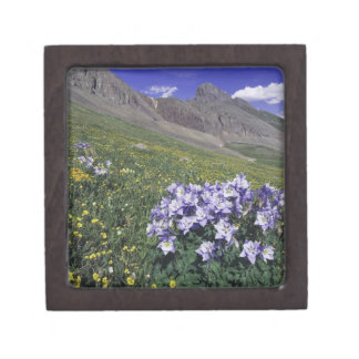 Mountains and wildflowers in alpine meadow, Blue Premium Jewelry Boxes