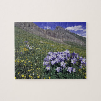 Mountains and wildflowers in alpine meadow, Blue Jigsaw Puzzle