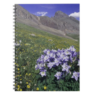Mountains and wildflowers in alpine meadow, Blue Spiral Notebook