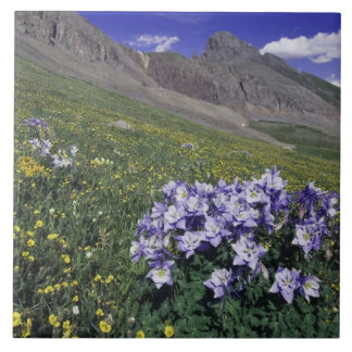 Mountains and wildflowers in alpine meadow, Blue Large Square Tile