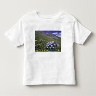 Mountains and wildflowers in alpine meadow, Blue T-shirts