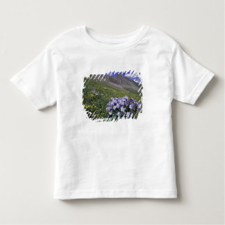 Mountains and wildflowers in alpine meadow, Blue T-shirt