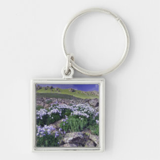 Mountains and wildflowers in alpine meadow, Silver-Colored square keychain