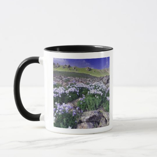 Mountains and wildflowers in alpine meadow, mug