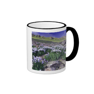 Mountains and wildflowers in alpine meadow, ringer coffee mug