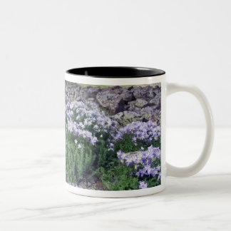 Mountains and wildflowers in alpine meadow, Two-Tone coffee mug