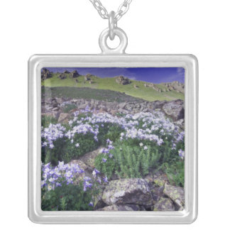Mountains and wildflowers in alpine meadow, jewelry