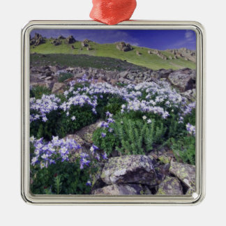 Mountains and wildflowers in alpine meadow, square metal christmas ornament