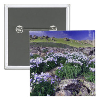 Mountains and wildflowers in alpine meadow, pinback button