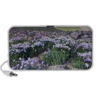 Mountains and wildflowers in alpine meadow, laptop speaker