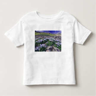 Mountains and wildflowers in alpine meadow, shirt
