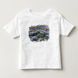 Mountains and wildflowers in alpine meadow, t shirts