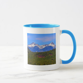 Mountains Flagstaff Arizona Mug