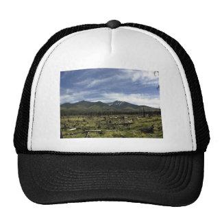 Mountains Landscape in summer Trucker Hats