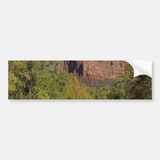 Mountains Streams Zion Bumper Stickers