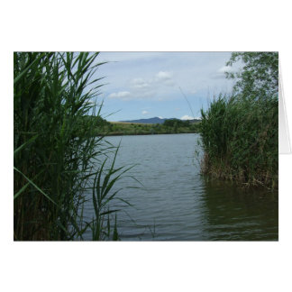 """Mountains through reeds"" Card"