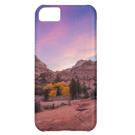 Mountainside iPhone 5C Cover