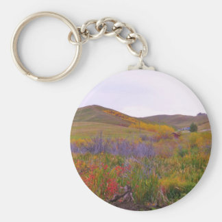 Mountian Colors Keychains