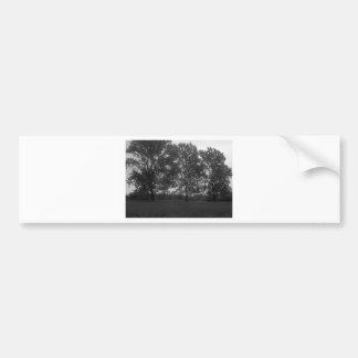 Mountview Park Triplets Bumper Sticker