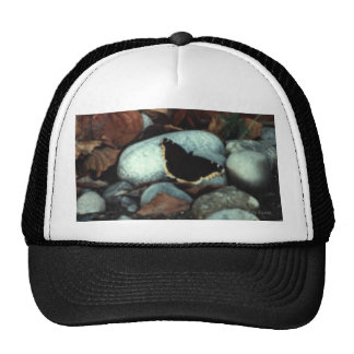 Mourning Cloak #01 Hats
