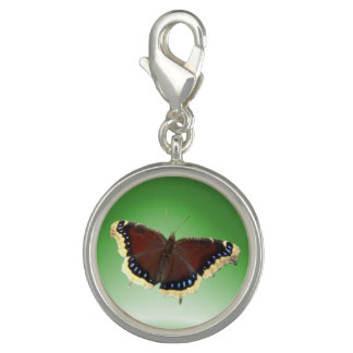 Mourning Cloak Butterfly ~ Charm