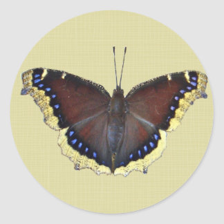 Mourning Cloak Butterfly - Nymphalis antiopa Classic Round Sticker