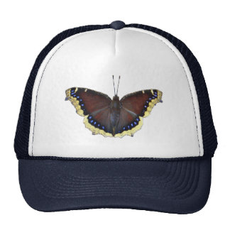 Mourning Cloak Butterfly - Nymphalis antiopa Hat