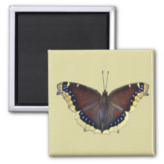 Mourning Cloak Butterfly - Nymphalis antiopa Refrigerator Magnet