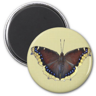 Mourning Cloak Butterfly - Nymphalis antiopa Magnet