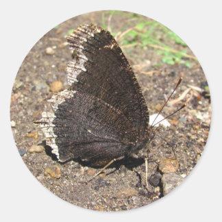 Mourning Cloak Butterfly ~ sticker