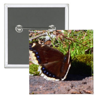 Mourning Cloak Butterfly Upclose Button