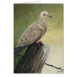 """""""Mourning Dove"""" Art Reproduction Notecards Cards"""