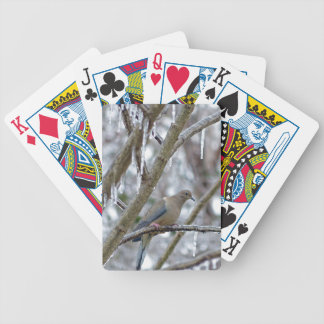 Mourning Dove Bicycle Playing Cards