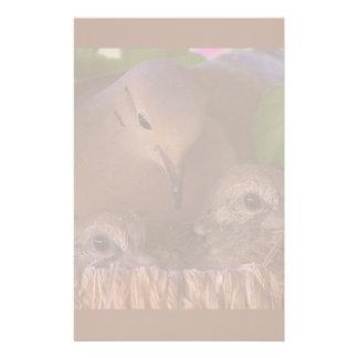 Mourning Dove Birds Babies Wildlife Animals Nest Stationery