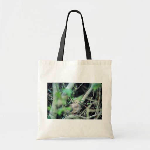 Mourning Dove Budget Tote Bag