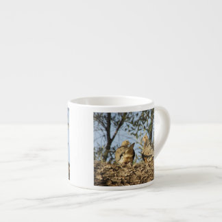 Mourning Dove Couple Espresso Cup