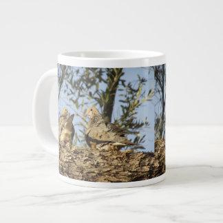 Mourning Dove Couple Soup Mug