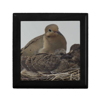 Mourning Dove Family Trinket Boxes