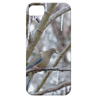 Mourning Dove iPhone SE/5/5s Case