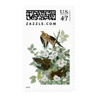 Mourning Dove, John James Audubon Postage Stamp