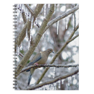Mourning Dove Notebook