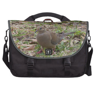 Mourning Dove or Turtle Dove on the Ground Laptop Bags