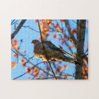 Mourning Dove Perched On A Branch Jigsaw Puzzle