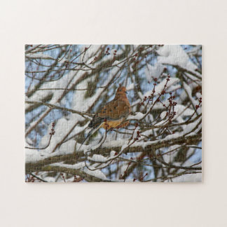 Mourning Dove Perched on Snow Covered Branches Jigsaw Puzzle