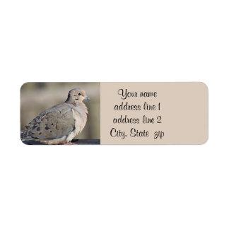 Mourning dove photo return address label