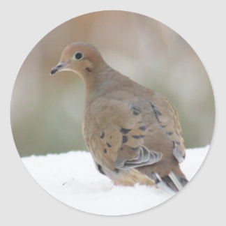 Mourning Dove photo on Personalized Round Stickers