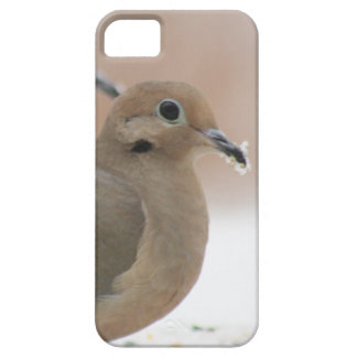 Mourning dove photography iPhone SE/5/5s case