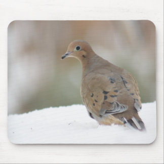 Mourning dove photography mouse pad